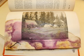 Mold on book